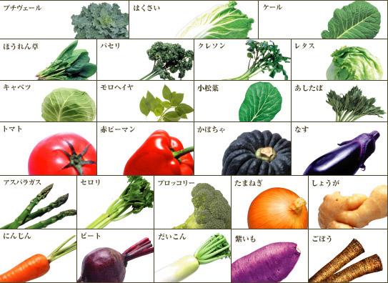 おいしさと栄養のバランスを考え、「オールベジ」は葉果茎根(ようかけいこん)の25種類の野菜からつくりました。野菜本来のおいしさをそこなわず、カロテノイドを始め食物繊維やカルシウムをしっかり補給できます。