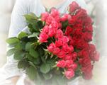 摘みたてのバラの花束