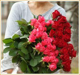 摘みたての花だけがもつ、優しい香りと、ときめきを、さめないうちに召し上がれ・・・