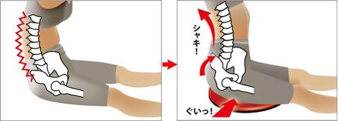 椅子の上に置いて座っているだけでも自然に骨盤周りの筋肉が鍛えられます。